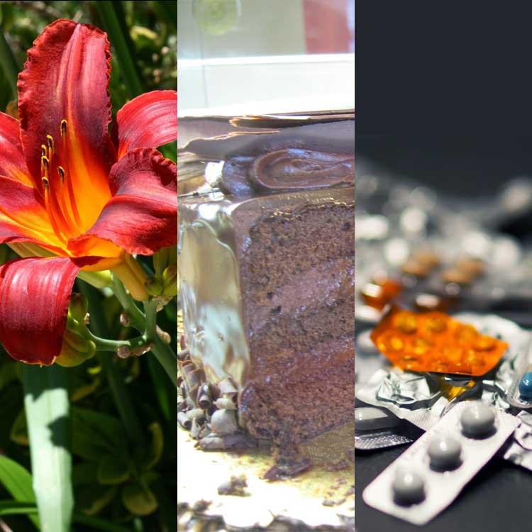 Poisons: Recognising symptoms
