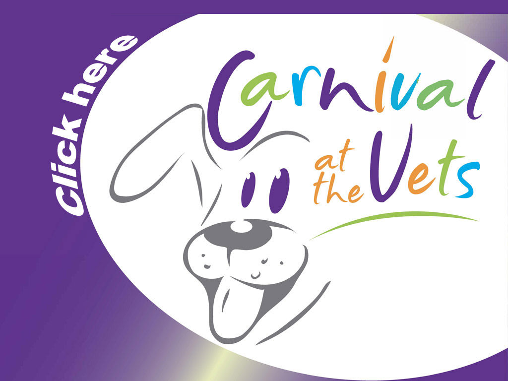 Carnival at the Vets (Porepunkah)